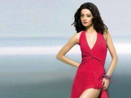 surveen chawla - hottest punjabi actresses