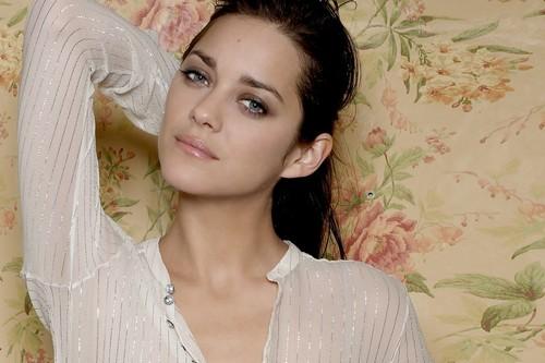 Marion-Cotillard-hollywood-hottest-