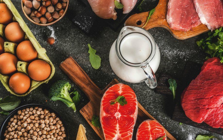high protein diet by shubi husain