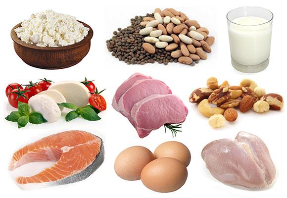 High Protein Diets - Shubi Husain