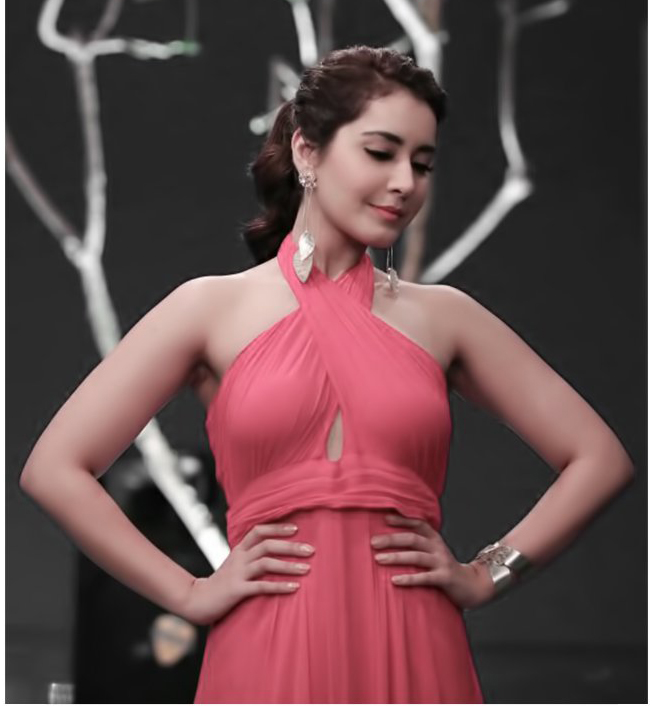 Raashi Khanna displays Suhani Pittie's Silver Accents
