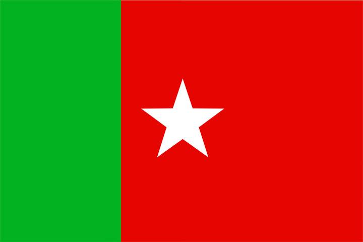 sdpi flag karnataka