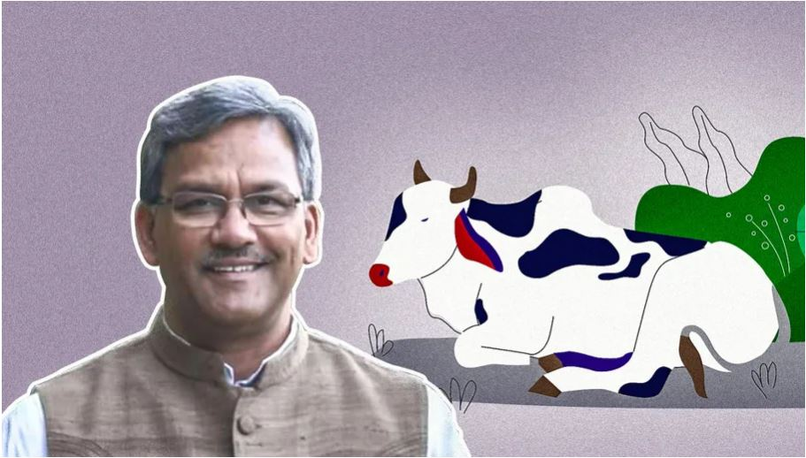 Cows Exhale Oxygen Theory - Trivendra Rawat