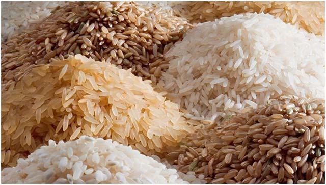 Rice - Gluten Free Food