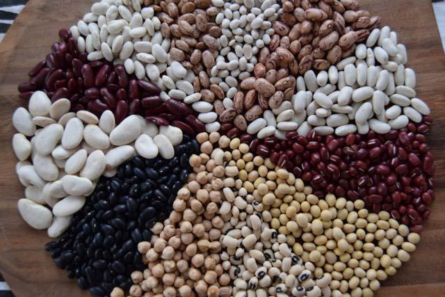 Beans Good for Celeac disease patients