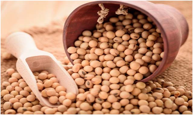 Soyabean - Gluten free food for celiac disease