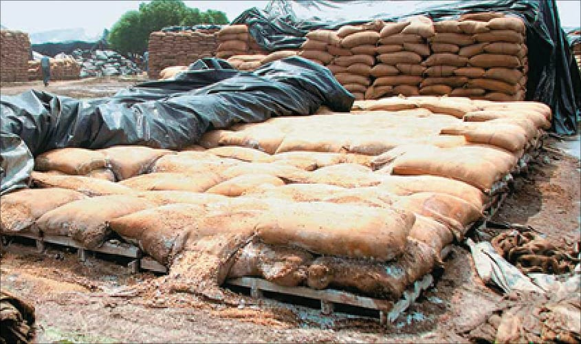 Policy thrust to boost rural economy